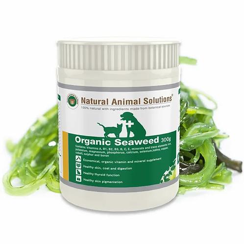 Organic Seaweed -