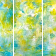 'Lemon Tree Reflections'