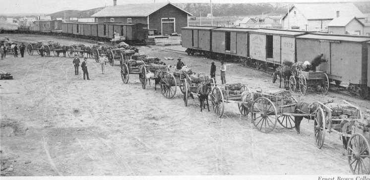 Red River carts.jpg