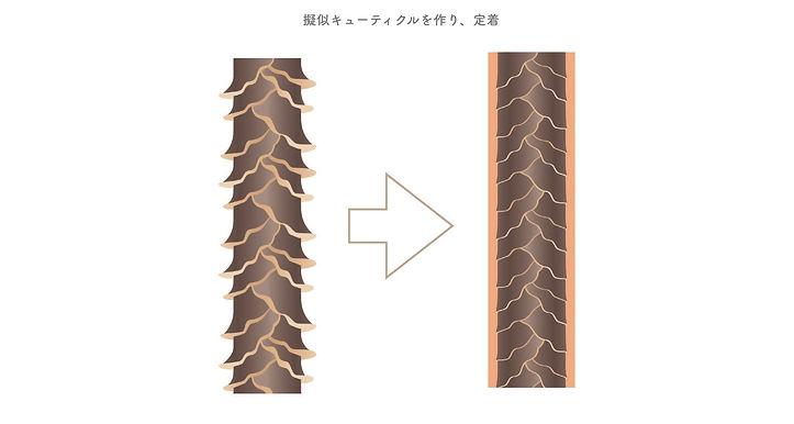 髪質改善 トリートメント