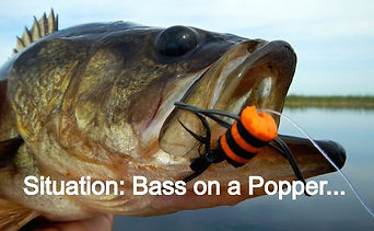 bass-orange-popper_edited.jpg