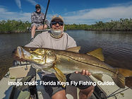 snook on a fly