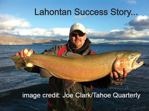 Lahontan Success story.jpg