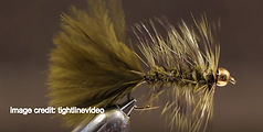 olive bead head wooly bugger