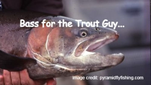 Bass for the Trout Guy...