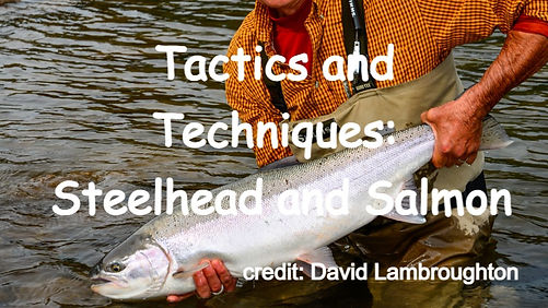 Tactics and Techniques: Steelhead and Salmon