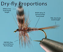 Dry Fly Proportions