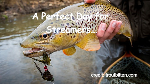 A Perfect Day for Streamers...
