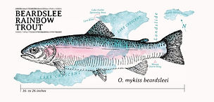 Beardslee trout.jpg