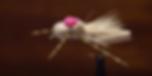 foam grasshopper_edited.png