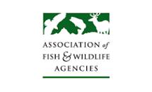 AFWA logo.png