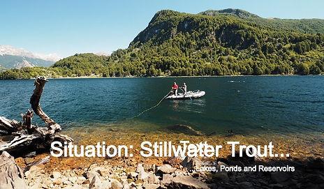 Stillwater Trout_edited_edited.jpg