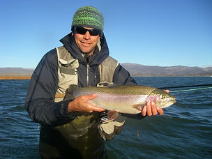 Eagle Lake Rainbow Trout.jpg