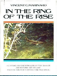 In the Ring of the Rise