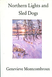 Northern Lights and Sled Dogs