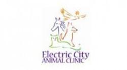 Electric City Animal Clinic