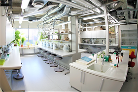MOLECULAR SCIENCE LABORATORIES