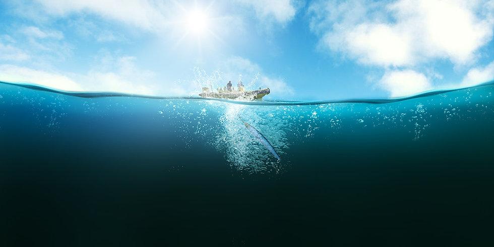 captain guillaume - peche en mer sur l'ile de ré - photographie guillaume labussiere
