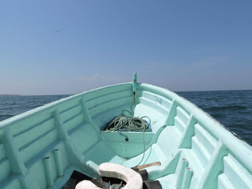 the boat to iguana island