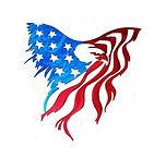 Eagle Flag art.jpg