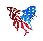 Eagle Flag art (2).jpg