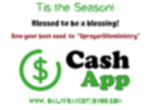Copy of Cash App Template - Made with Po