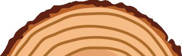 bottom-log.png