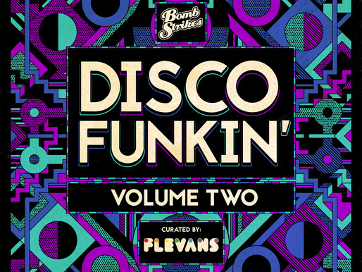 Disco Funkin' Vol. 2: Flevans