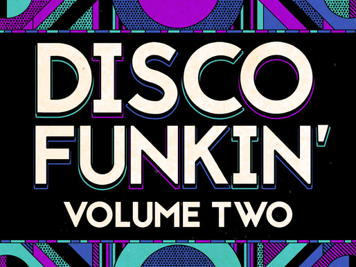 Disco Funkin' Vol 2: Flevans