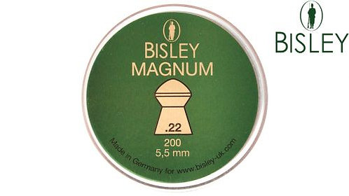 Bisley Magnum 22 cal