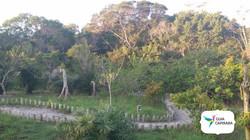 Parque Estadual Paulo César Vinha