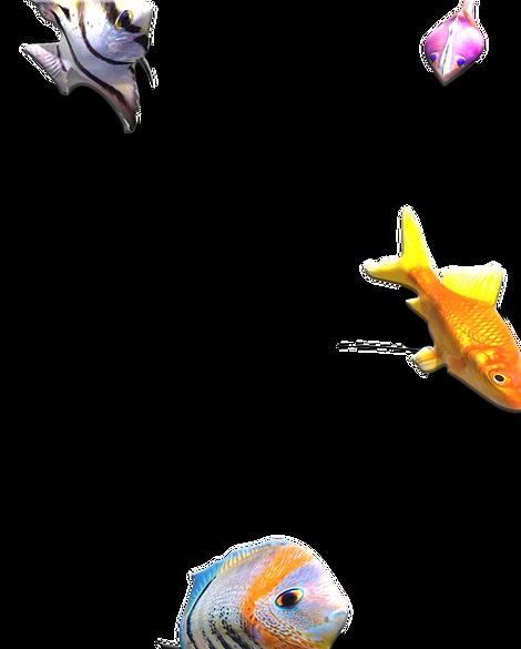 fishtank%20copy_edited.png