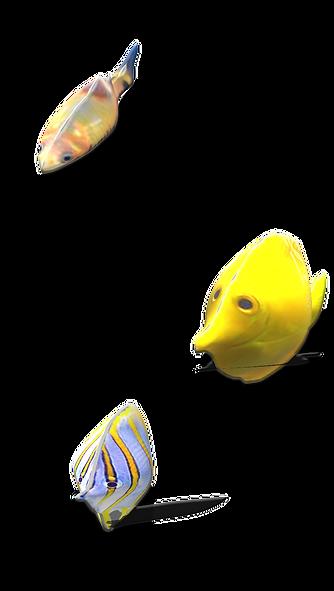 fishtank_edited.png