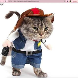 Toggle Cat