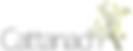 smallest_Cattanach_logo_739x1000.png