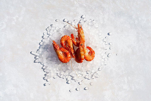 Large Queensland Tiger Prawns
