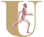 Ultimate Physical Therapy Logo