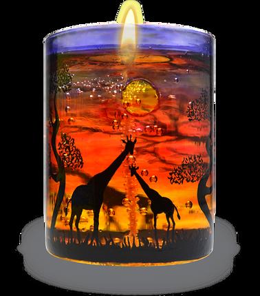 [CA501] Giraffe Safari