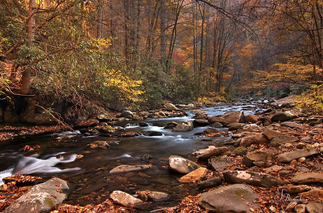 Fires Creek North Carolina