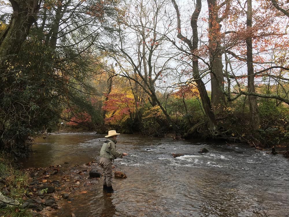 Fall Fly Fishing in North Georgia
