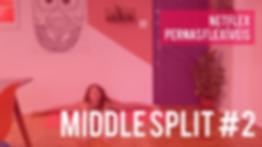 PERNAS FLEXIVEIS MIDDLE 2.png