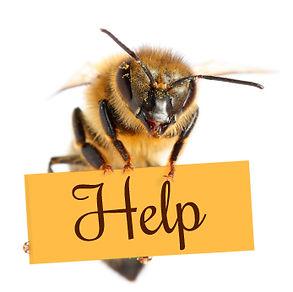 ob_b3f355_bee-help.jpg