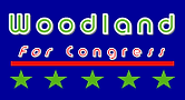 Small Toya Logo.png