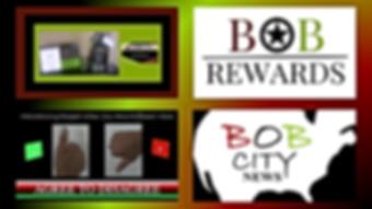 The BOB Program .png