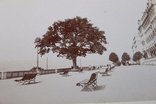 Photographie ancienne 1899 Pau Hautes Pyrénées Terrasses Montagne