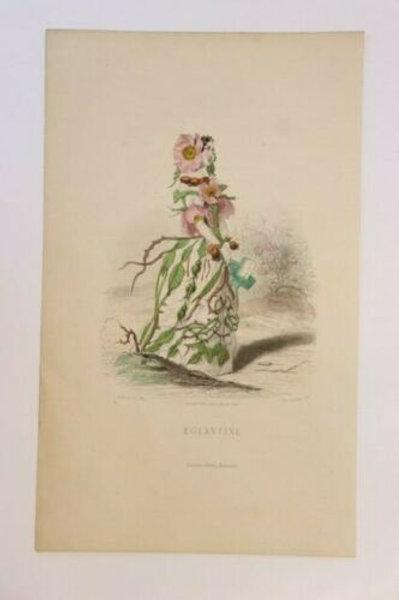 Fleurs animées 1867 Estampe aquarellée gommée époque Femme Fleur églantine