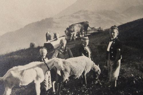 Suisse (Dans les alpages enfants et chèvres) CPA non voyagée TBE