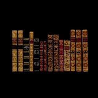 CONSEIL AUX BIBLIOPHILES par Gustave Geffroy