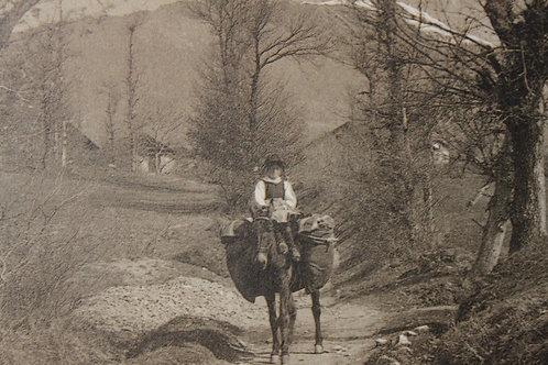 Suisse En Valais (A dos d'âne) - CPA non voyagée TBE