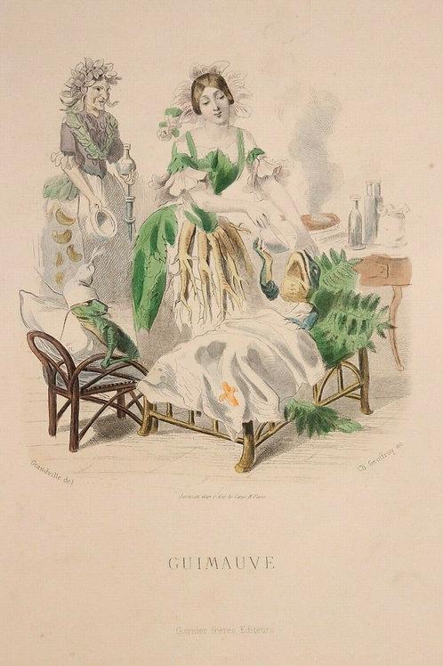 Grandville Fleurs animées 1867 Estampe aquarellée époque Femme Fleur Guimauve